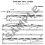 Moon and Rain: Europa